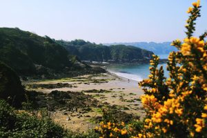 Partir sur les routes de la Bretagne du Nord
