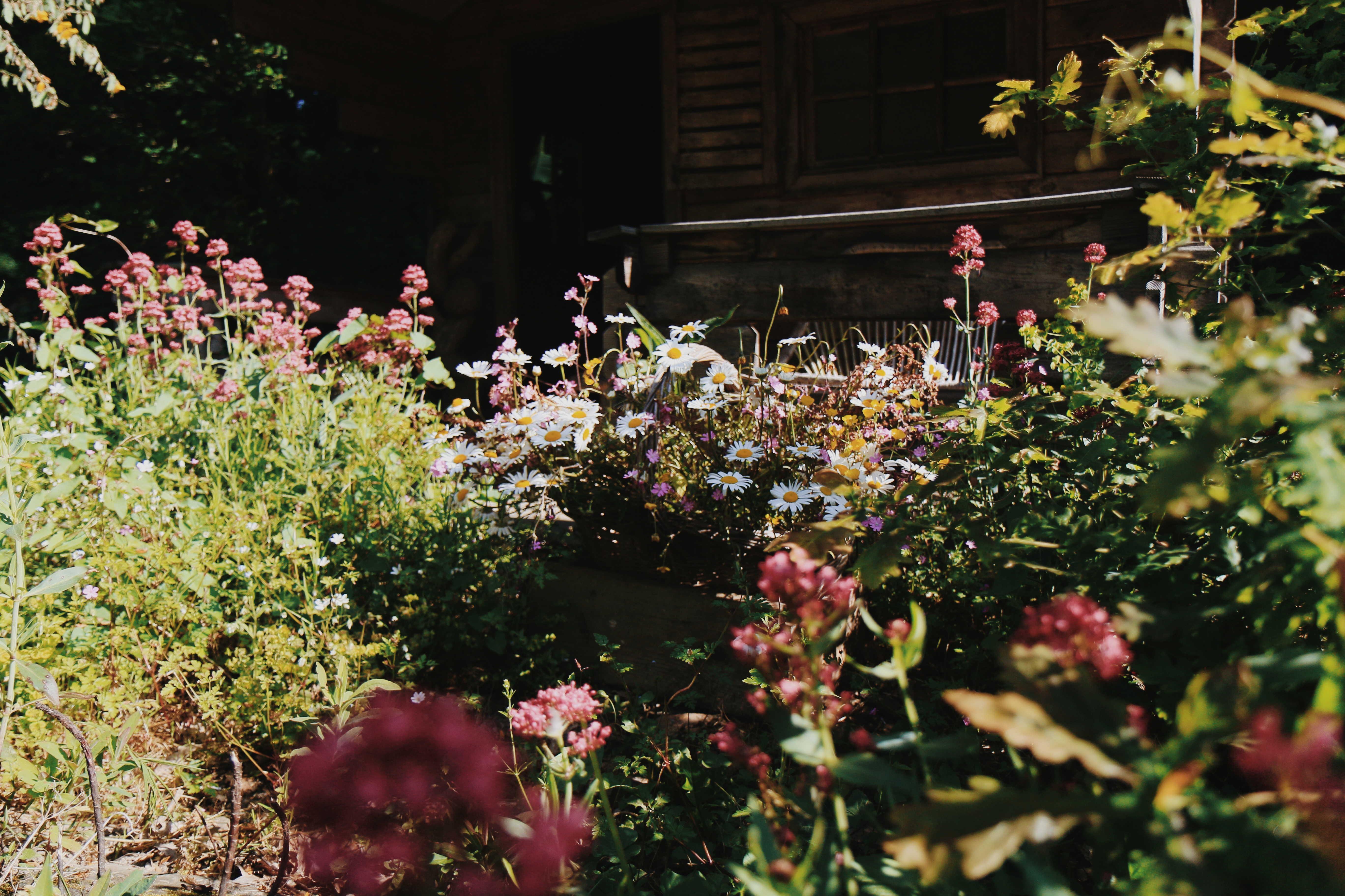 Jardin Au Pré du Moulin