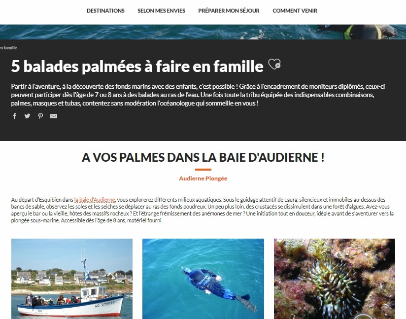 Article_palmes